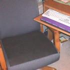 Flatulence Deodorizer Chair Pad